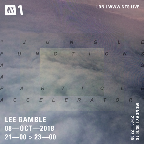 Lee Gamble - NTS RADIO (Oct 18')